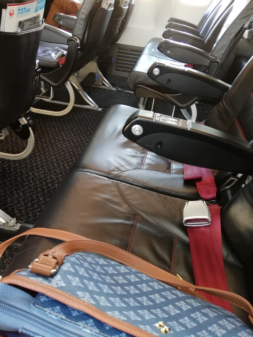 JAL機の機内シート席